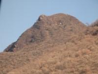 箱根山の顔