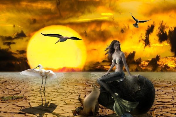 2050年の地球環境